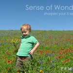 Sharpen your 5 senses